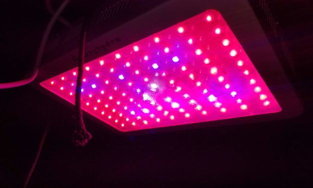 Roleadro LED Grow Light, Galaxyhydro Series 1000W Indoor Plant Grow Lights Full Spectrum