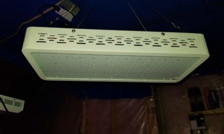 ONEO 1000W Full Spectrum Sunlight 3500K White and Red LED Grow Light