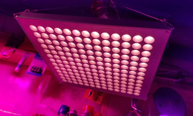 TOPLANET 75W Full Spectrum LED Grow Light