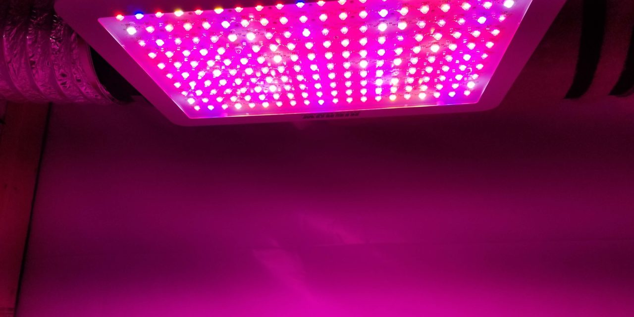 HIGROW 2000 Watt Double Chip LED Full Spectrum Grow Light