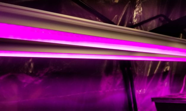 Barrina 4ft T8 252W (6 x 42W) Full Spectrum LED Grow Lights