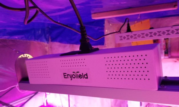 The 600W LED Full Spectrum EnjoYield Indoor Grow Light